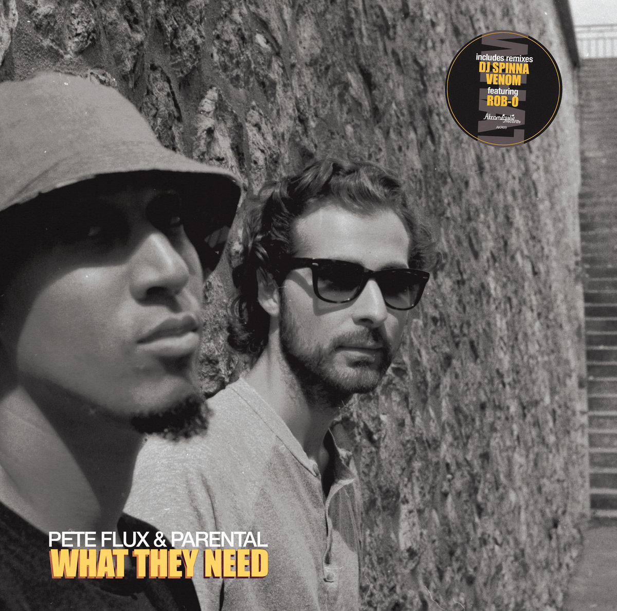Pete_flux___parental_presentan_what_they_need