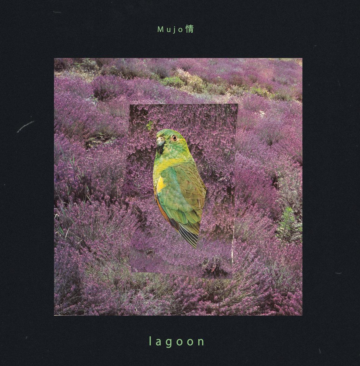 Mujo_lagoon