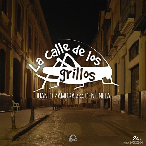 Juanjo_zamora_-_la_calle_de_los_grillos