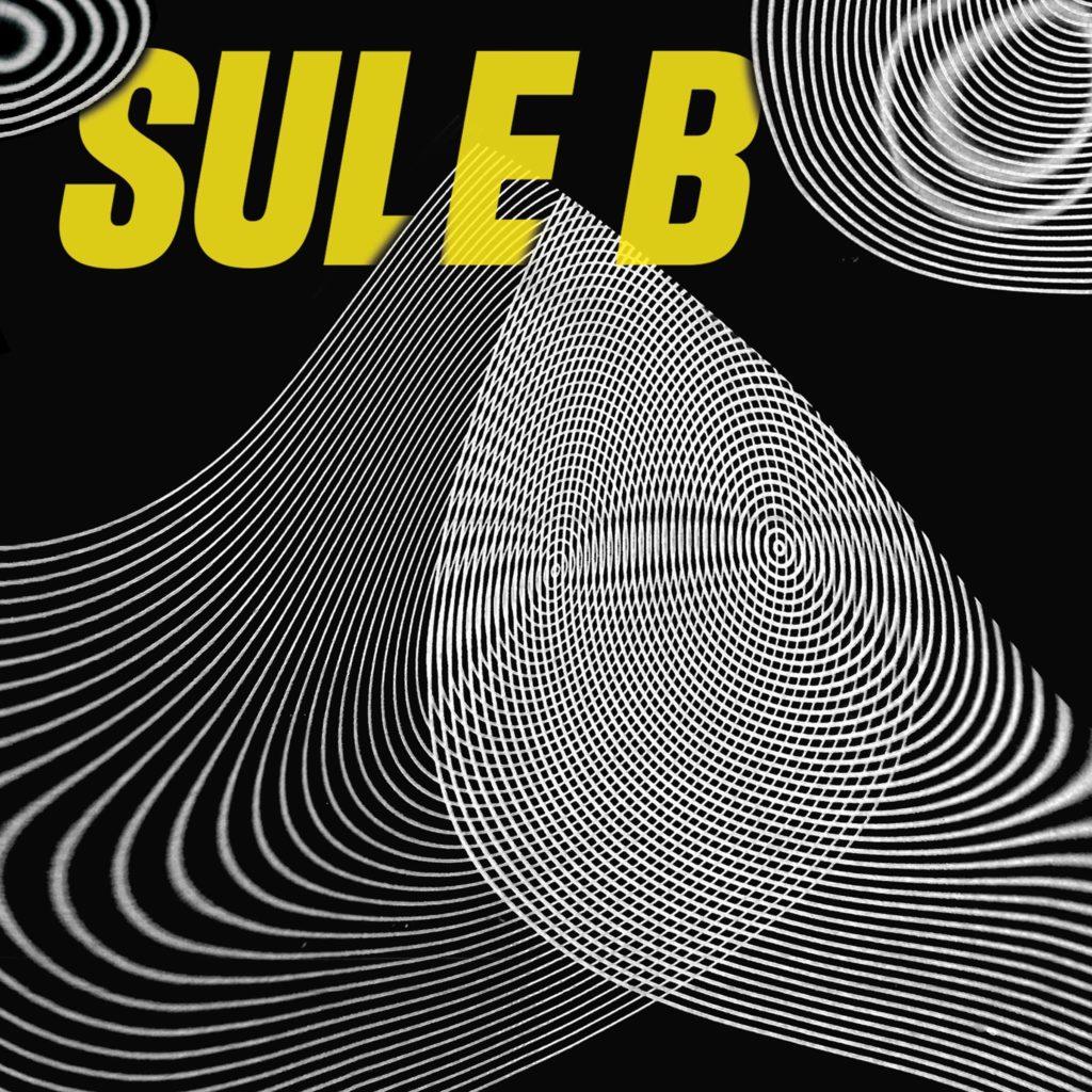 Sule_b_-_la_teor_a_del_caos