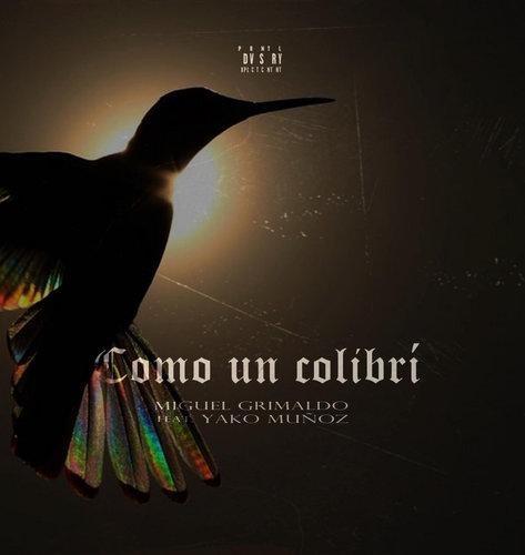 Medium_como_un_colibr__miguel_grimaldo___yako_mu_oz