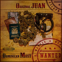 Small_original_juan_-_domincan_most_wanted