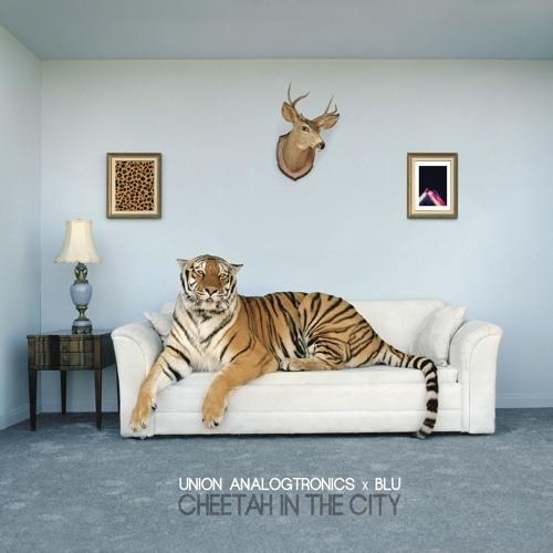 Medium_cheetah_in_the_city