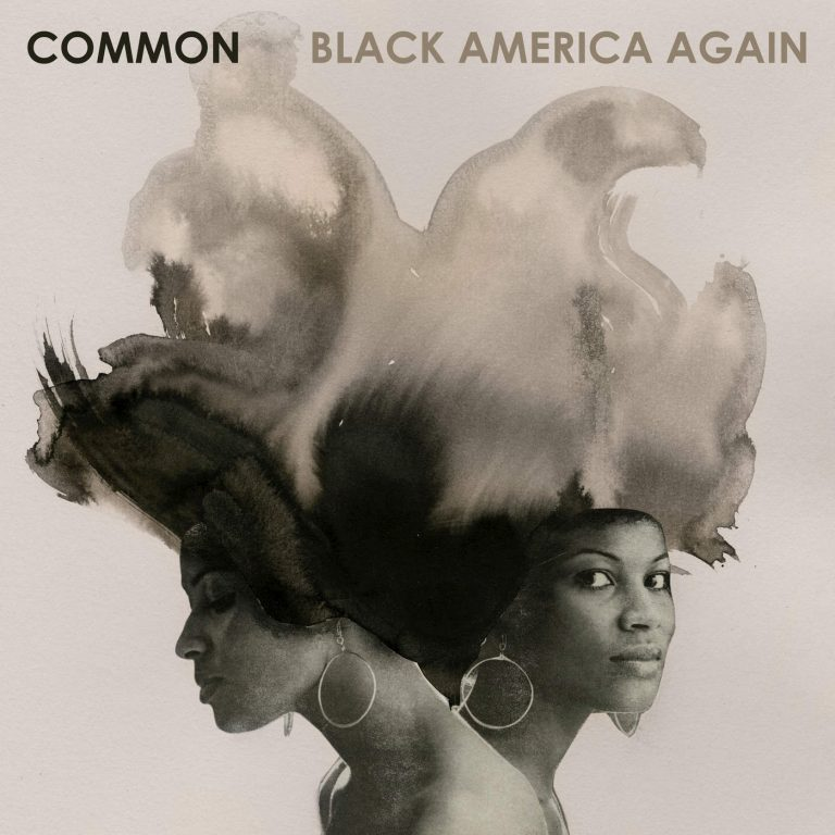Common-black-america-again-768x768