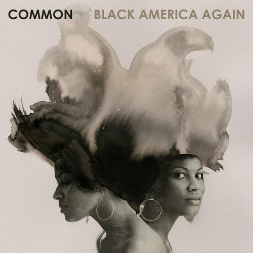 Medium_common-black-america-again-768x768
