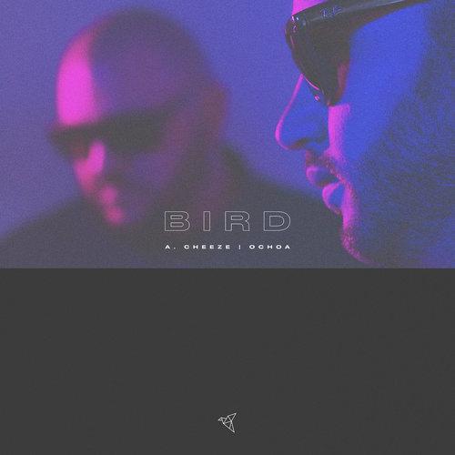Medium_birds