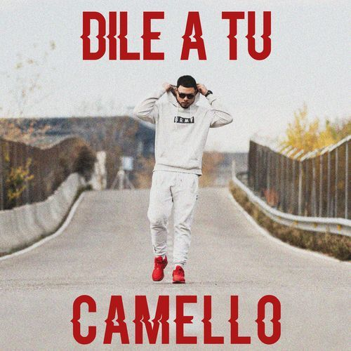 Medium_dile_a_tu_camello