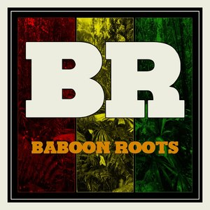 Square_baboonroots